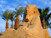Горящие туры! Египет!